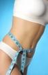 Présentation EquiDiet: Article sur ce concept diététique, questionnaire personnel et inscription afin de mincir intelligemment et apprendre à rester mince.